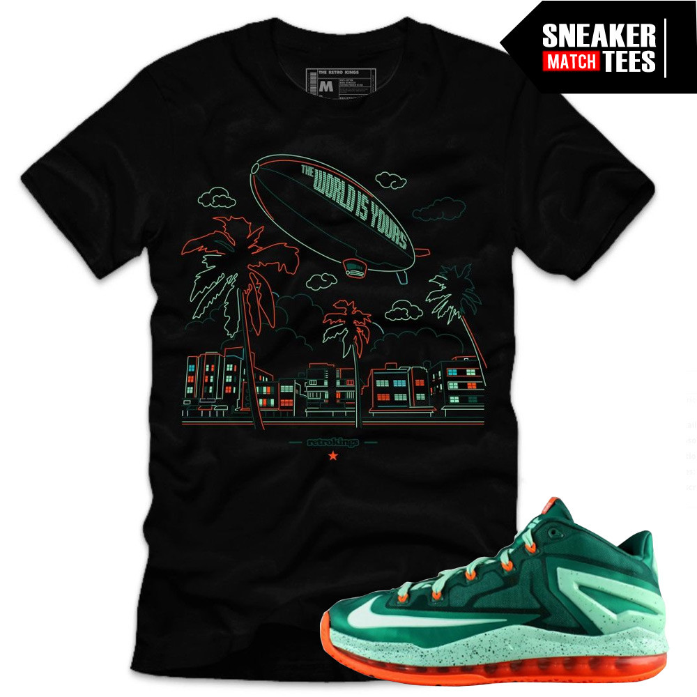 Bicayne-Lebrons-sneaker-tees-to-match