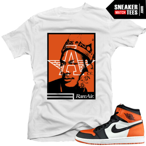 shattered backboard 1s jordan matching shirt