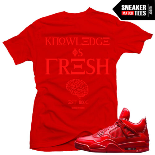 shirts to match 11lab4 red