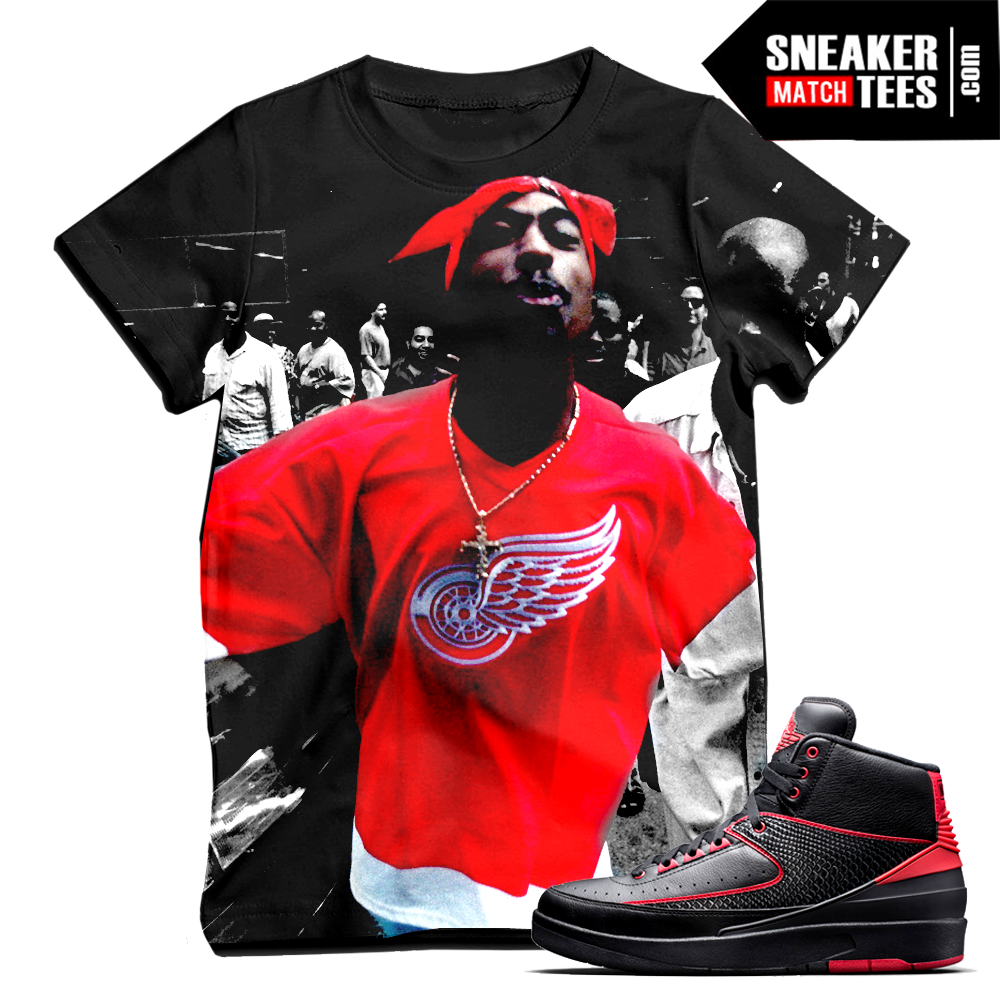 Air Jordan 2 Alternate 87 Matching Sneaker Tees Sneaker