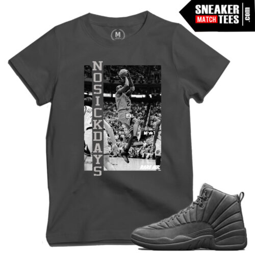 PSNY 12s matching Sneaker Tee shirts