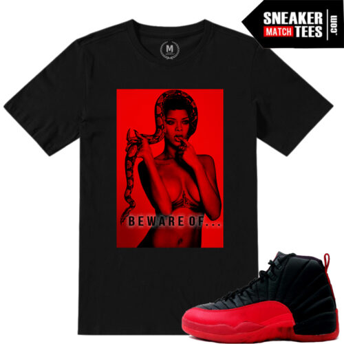 Shirts matching Flu Game 12