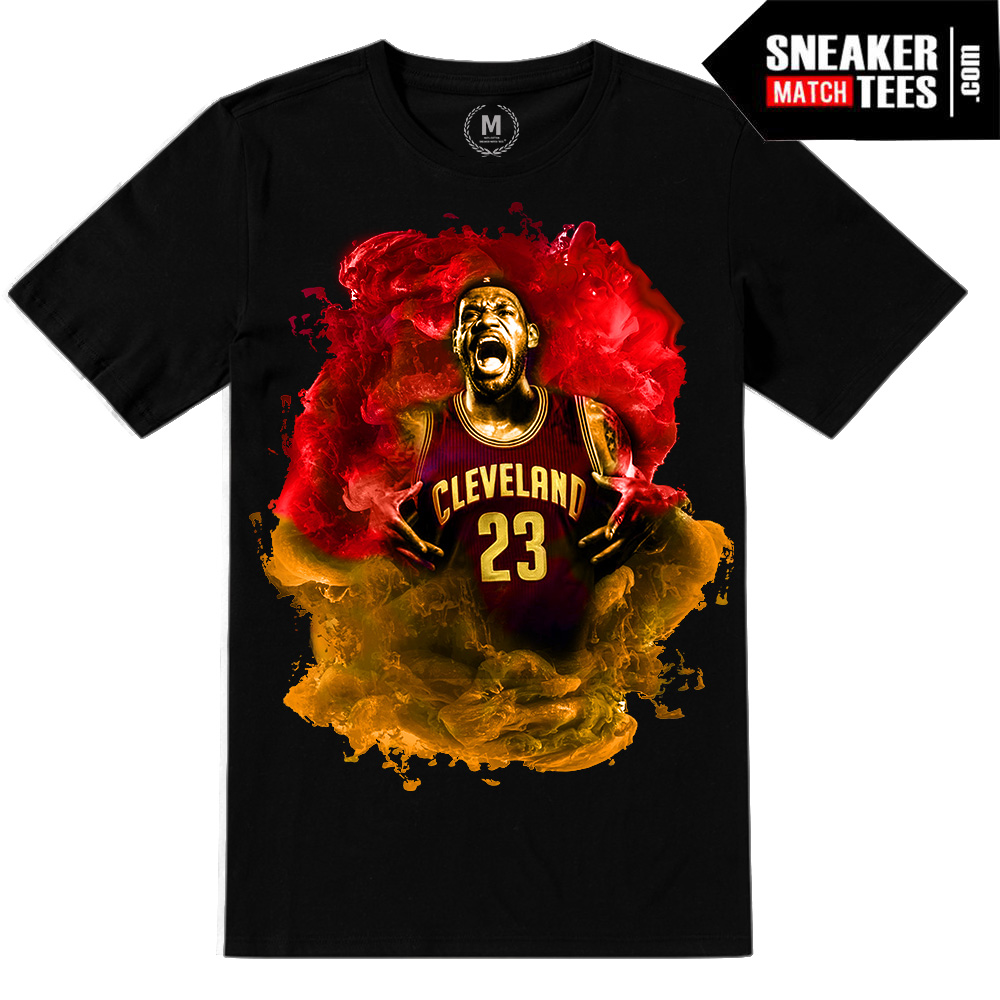 Lebron James Cavs Final T Shirt | Sneaker Match Tees