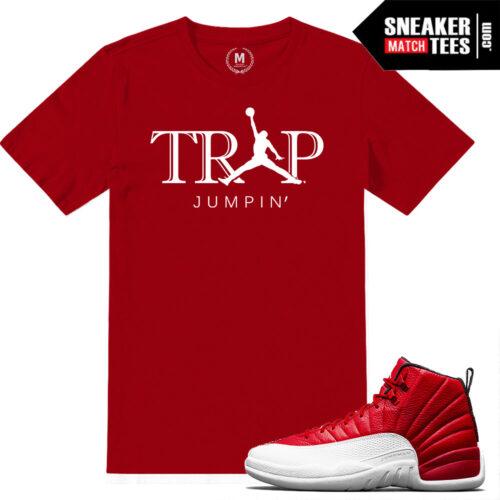 Gym Red 12 Jordan T shirts match