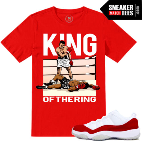 Jordan Retros Sneaker tees Match Varsity red 11
