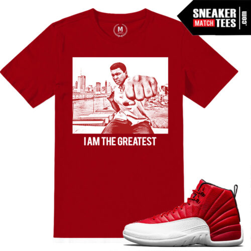 Sneaker match Gym Red 12 t shirts
