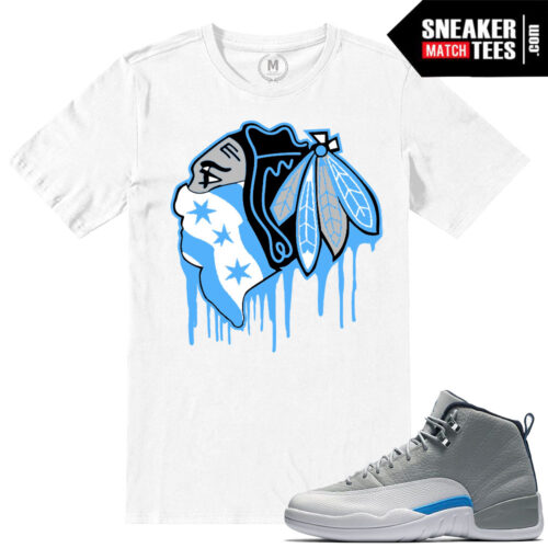 Wolf Grey 12s t shirts match