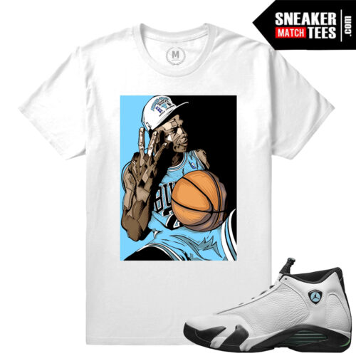 Jordan Retros Oxidized 14s match T shirts