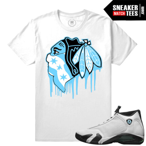Match Jordan 14 Oxidized T shirts