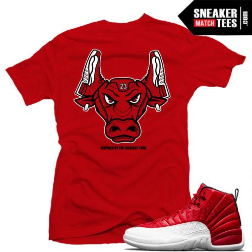 Shirts match Retro Jordan Gym Red 12
