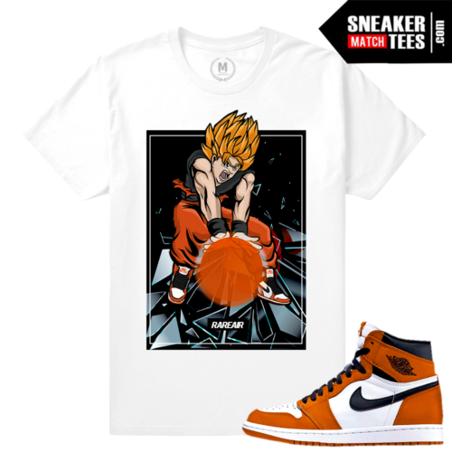 Match Jordan 1 Reverse Shattered BackBoard