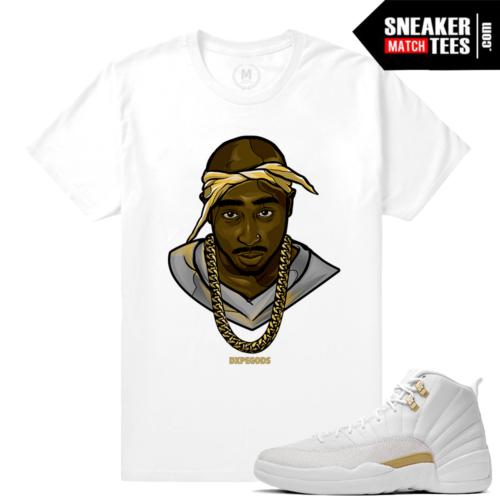Sneaker Match Tees OVO 12 Jordans