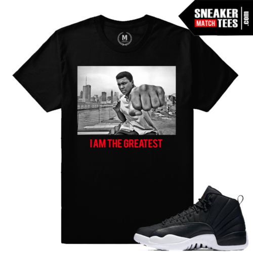 Sneaker Tees Match Jordan 12 Nylon