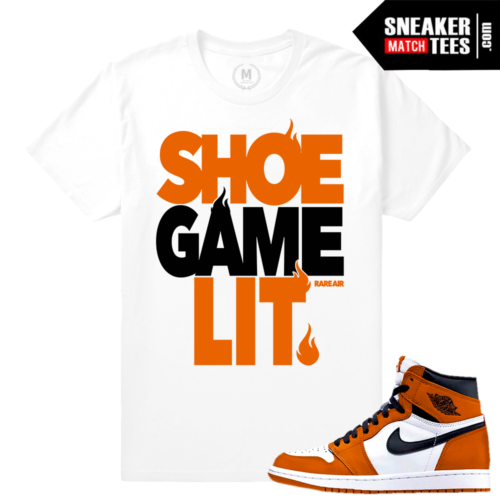 Jordan 1 shattered backboard Reverse Matching Tee shirts