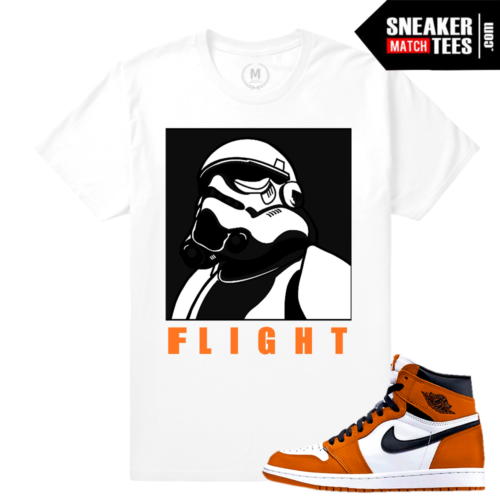 Jordan 1 Shattered Backboard T shirts Match