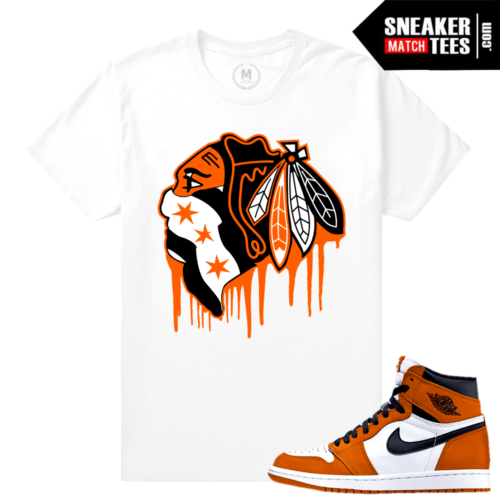 Jordan 1 t shirt Match Shattered BackBoard 1 Reverse