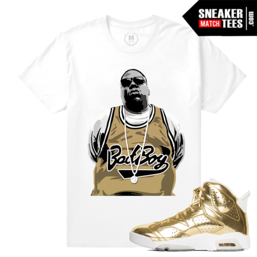 Jordan 6 Pinnacle Tee