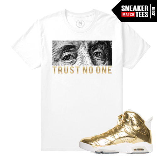 Shirt Match Jordan Retro 6 Pinnacle