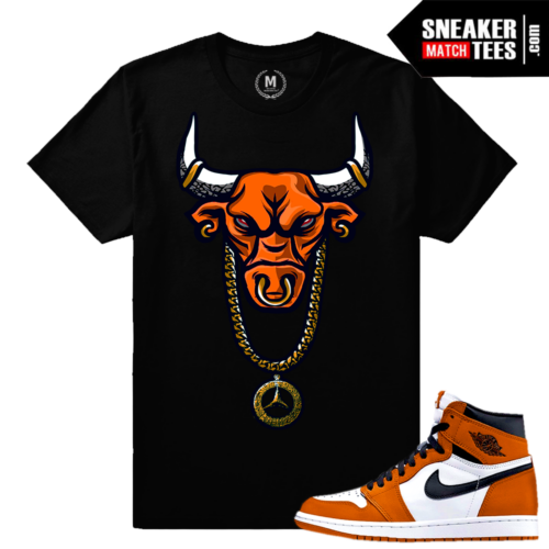 T shirt Reverse Shattered Backboard 1s