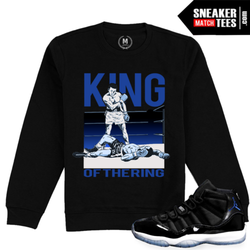 Jordan 11 Space Jam Matching Sweatshirt Crewneck