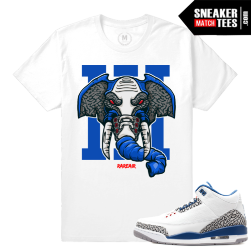 Sneaker Match Tee True Blue 3s