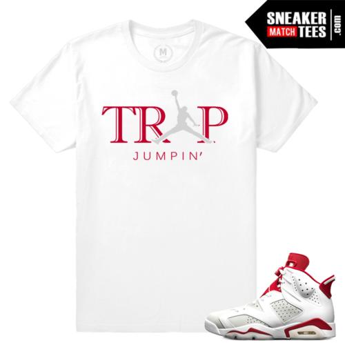 Sneaker shirts Jordan 6 Alternate