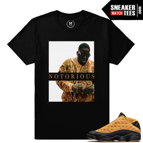 Jordan 13 Low Chutney Match Sneaker t shirt