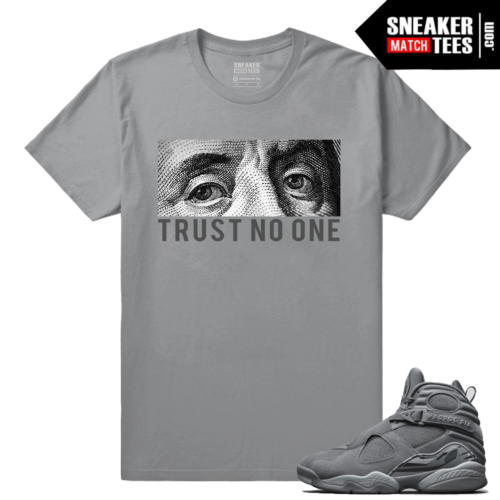 Air Jordan 8 Retro Cool Grey Sneaker Tees Shirts