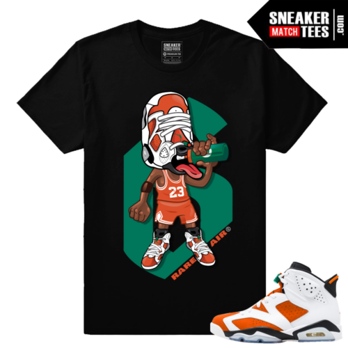Sneakerhead Jordan 6 Gatorade