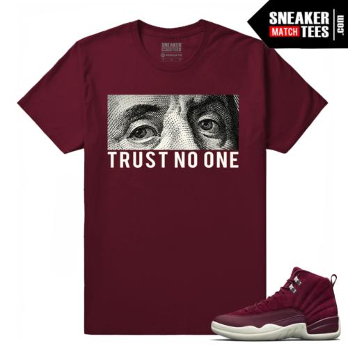 Sneaker tees Jordan Retro 12 Bordeaux