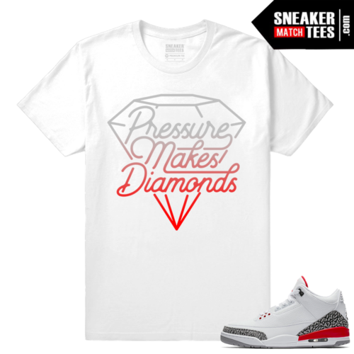 Jordan 3 shoes match shirt