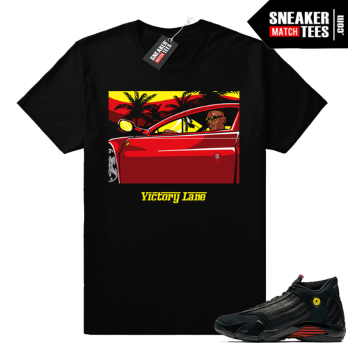 Air Jordan 14 Last Shot Shirt Match