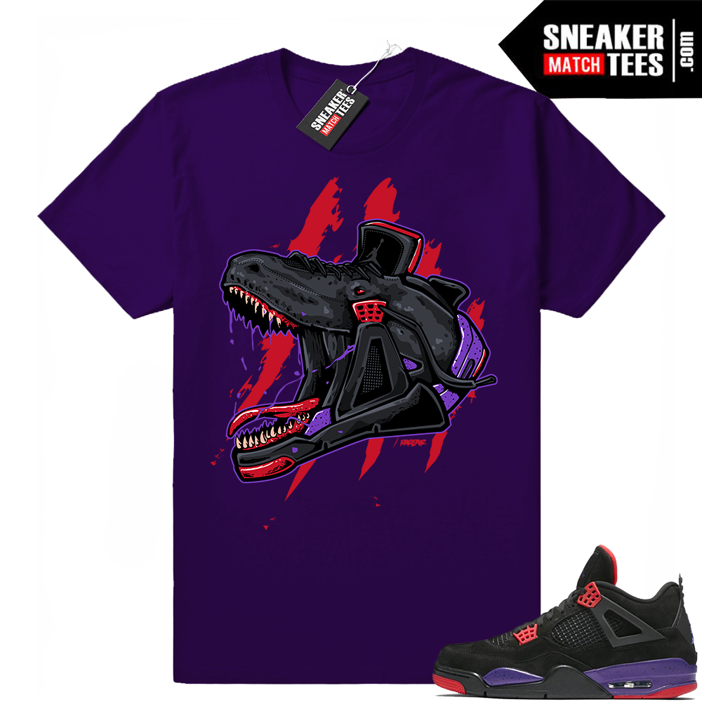 Raptors 4 Jordan Shirts