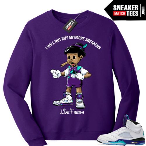 Air Jordan 5 Sweatshirt Grape