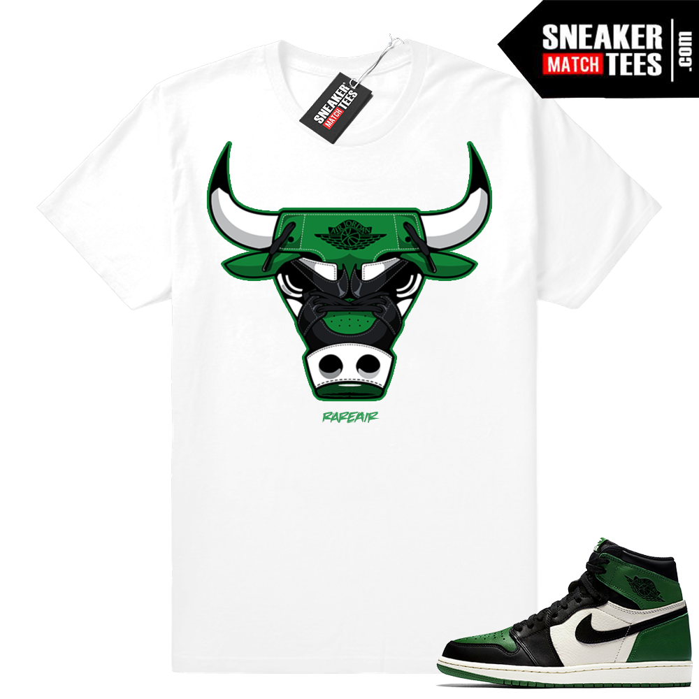 Pine Green retro 1 Rare Air Bull