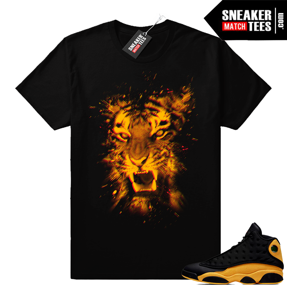 retro 13 sneaker apparel