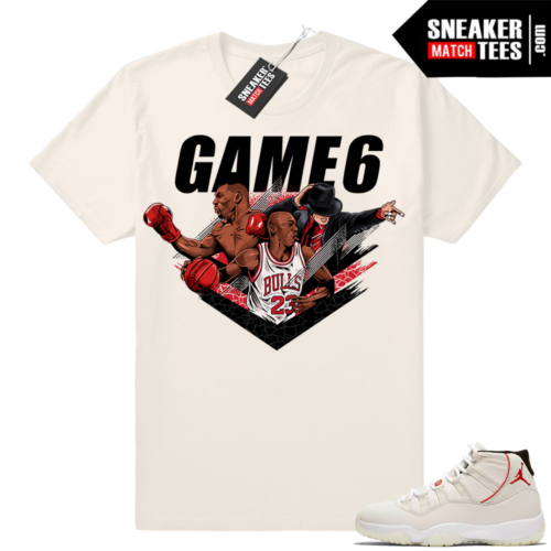 Air Jordan 11 shirts