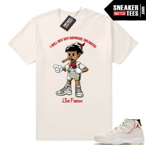 Air Jordan retro 11 shirt Platinum Tint