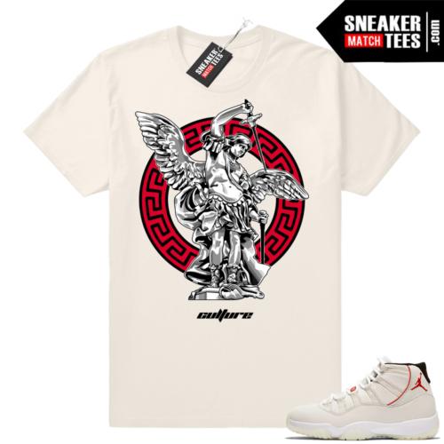 Jordan 11 t-shirt match