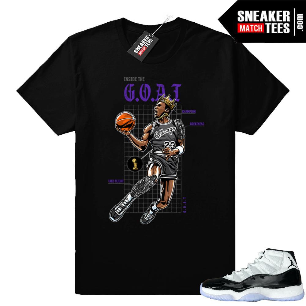 Match Concord 11 Jordan shirt