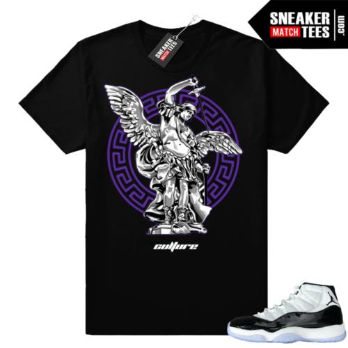 Air Jordan 11 Concord tee shirts