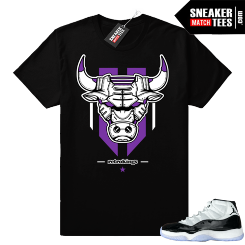 Concord 11 Jordan shirts