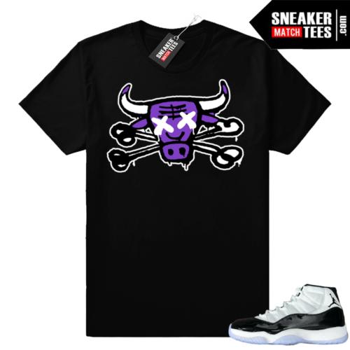 Concord 11 Jordan t-shirt