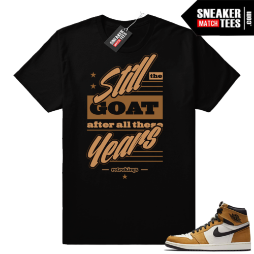 Jordan 1 Rookie of the Year shirt match
