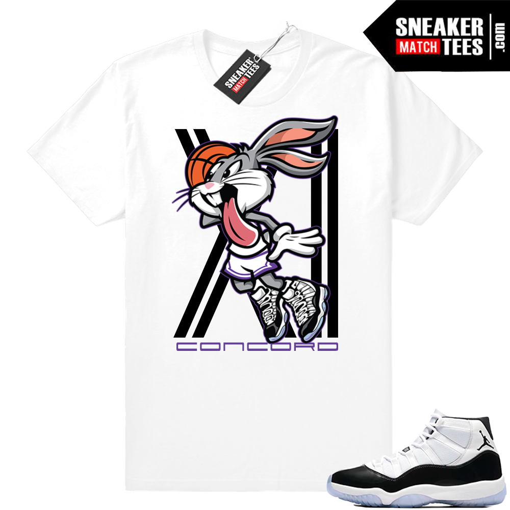 Jordan 11 Concord Air Rabbit tee