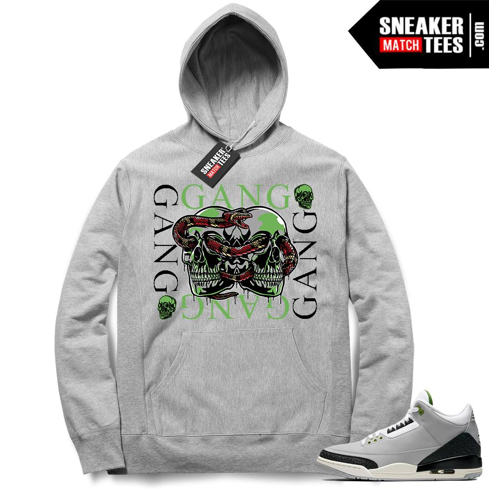 Jordan 3 Chlorophyll sneaker match Hoodie