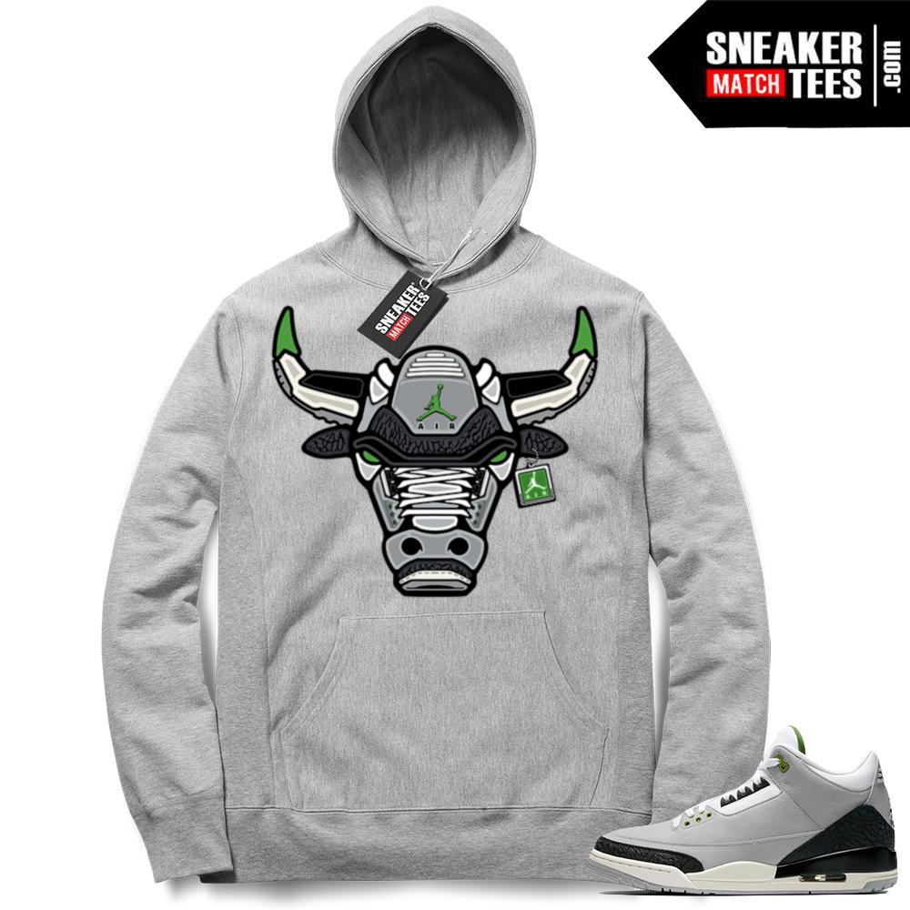 Jordan 3 hoodie Chlorophyll