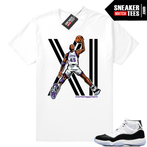 Jordan 11 Concords MJ Dunk