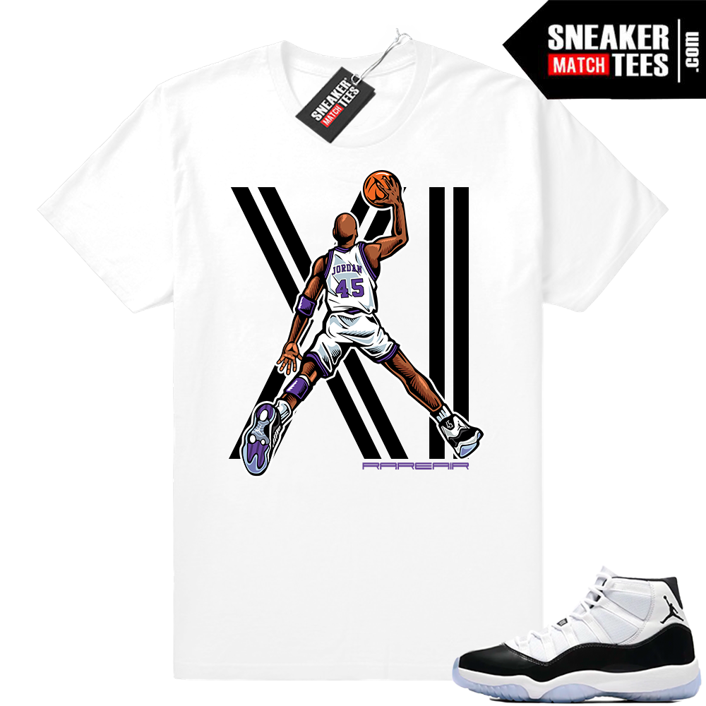 Jordan 11 Concords MJ Dunk