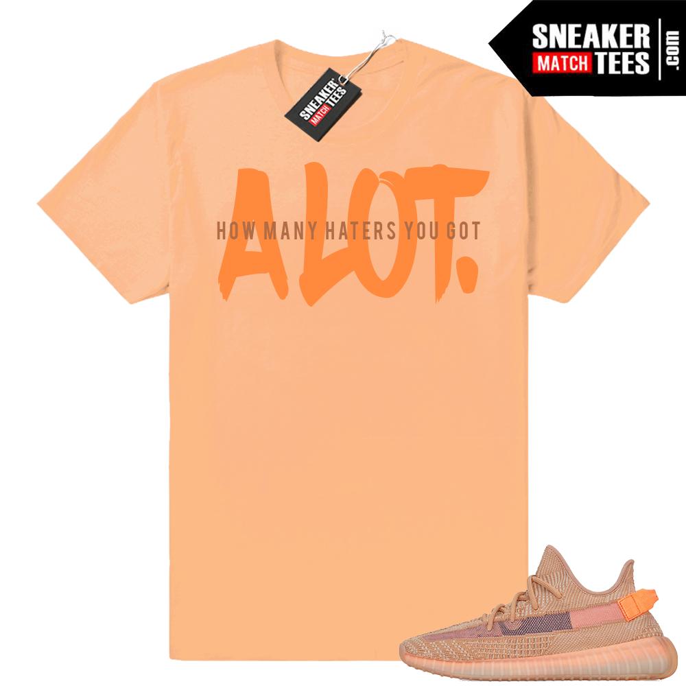 Clay Yeezy Sneaker tee shirt